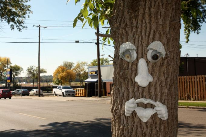 This tree mocks walkers on Cretin Avenue, just north of Ford Parkway in Highland Park. October 1, 2016