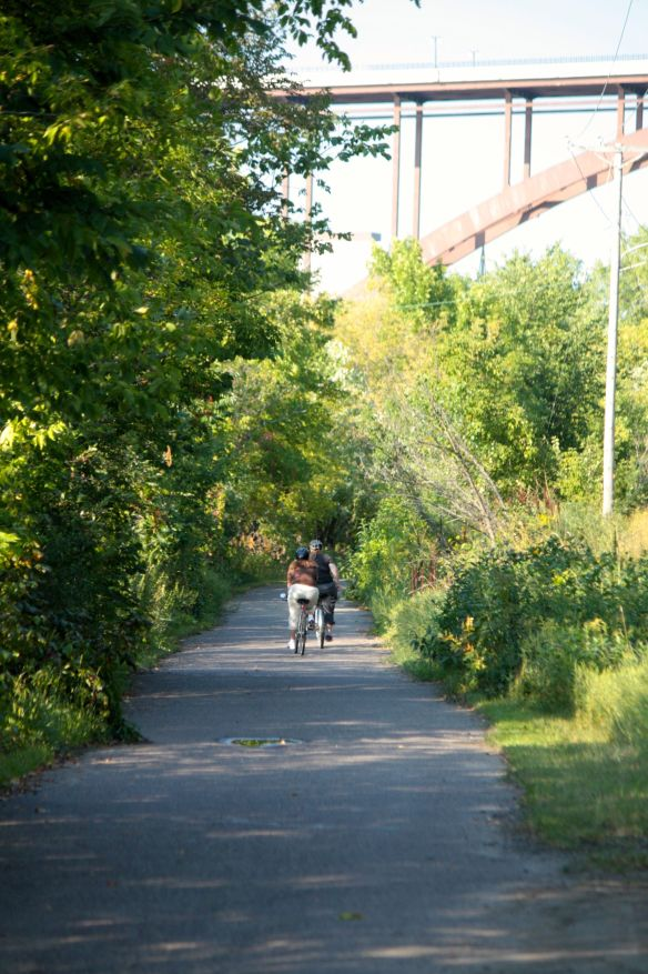 The bike trail in this section of the park is wide, smooth and separated from the road by trees and bushes.
