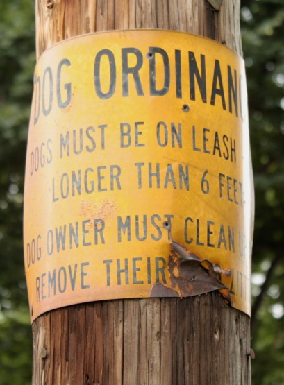 Did a dog (or owner) take exception and a bite out of the sign?