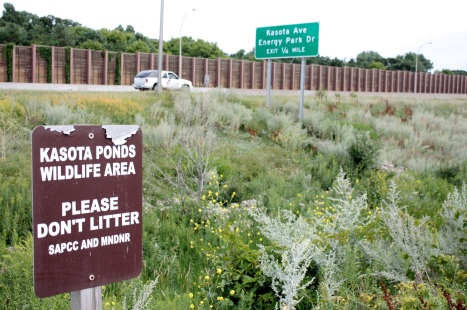 Cars on highway 280 unknowingly zoom past the Kasota Ponds Wildlife Area. To my untrained eye, it isn't more than a glorified drainage pond at the end of a cul-de-sac.