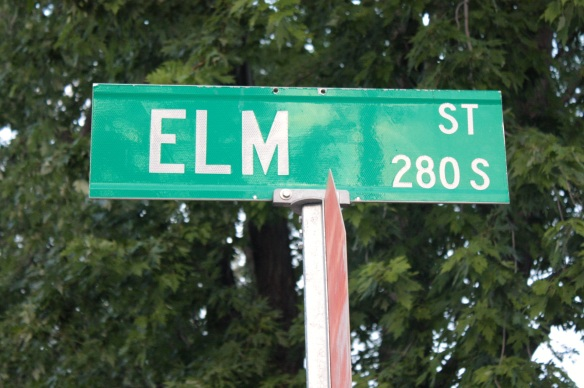 Elm Street, according to City records, was the western boundary of the Town of Saint Paul when it was established in November 1849.