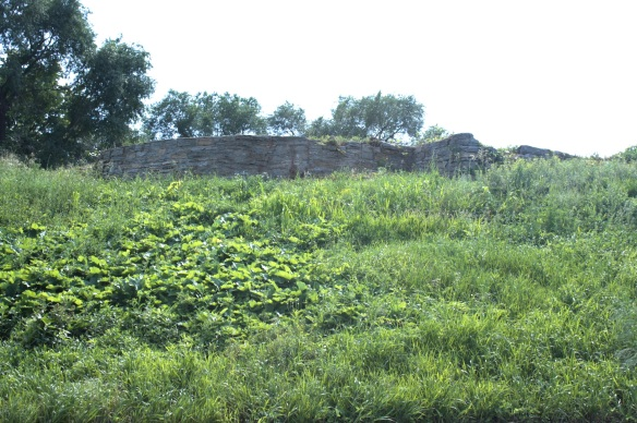 This limestone wall near the top of Selby Hill, high above Old Kellogg/Mother Teresa of Calcutta Boulevard may be a remnant of a long-gone building or an old retaining wall. There were no signs or markings to indicate why the wall was here.