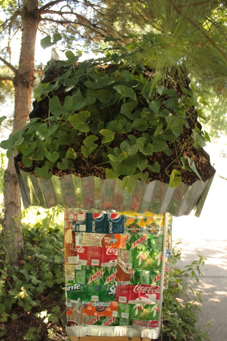 Soda (pop) cans line the exterior and most unusually, plants and dirt create a green roof.