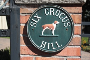 crocus hill address 2
