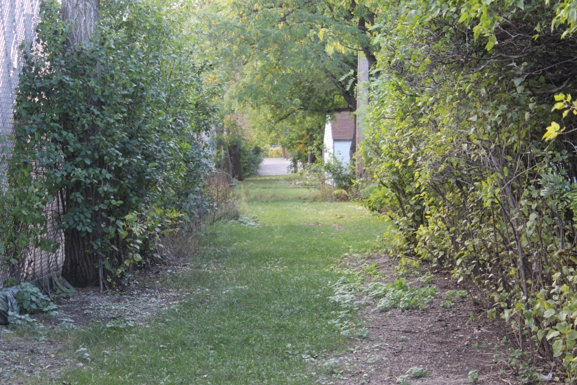 An alley was platted but never built here, behind the homes in the 1760-90 block of Norfolk Avenue.