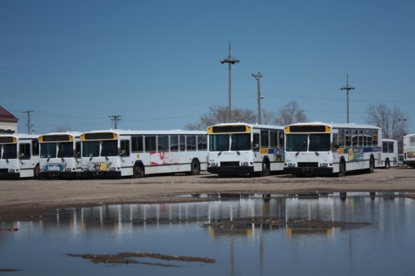 It's the end of the line for these decommissioned Metro Transit buses, which are reflected in a large puddle.