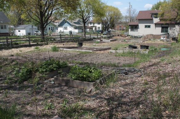 The mostly unplanted Oxford Urban Farm is two blocks east of Gina and Tony's at Dayton and Oxford.