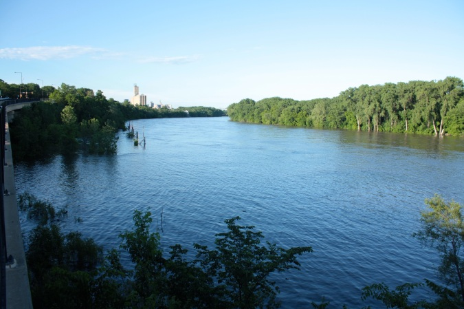 On the Samuel Morgan trail west of Randolph Avenue, it's obvious how much wider than usual the river is.