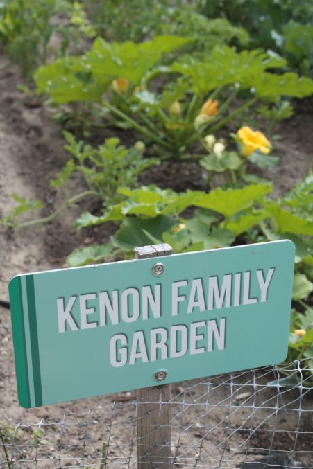 pilgrim baptist garden 2