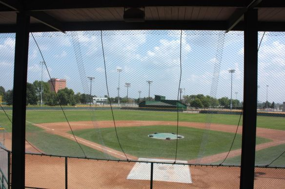 Peering at the field through the foul ball screen.