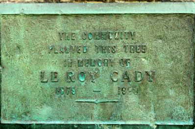 LeRoy Cady served as the second leader of the Department of Horticulture. Cady was involved early in several agricultural organizations such as the American Peony Society and the Minnesota State Florist Association, where he was president in 1918-1919.