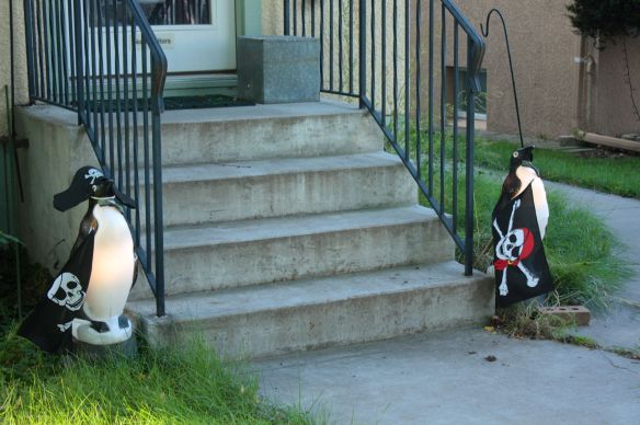Pirate penguins or penguin pirates? You tell me.