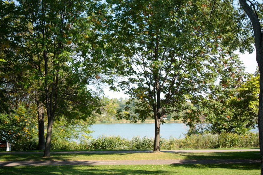 Como Lake and walking and bike paths are on the opposite side of West Como Boulevard.