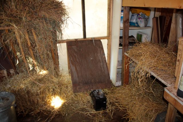 One of the two rooms in the goat barn Hal and Luke built.