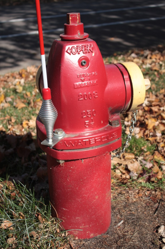 Finn and Lincoln. The silver object on the left side of the hydrant is a spring which holds an orange and white flag pole approximately two feet tall. When a big snow storm hits, the flag lets firefighters and nearby residents know where a snow-buried hydrant is.