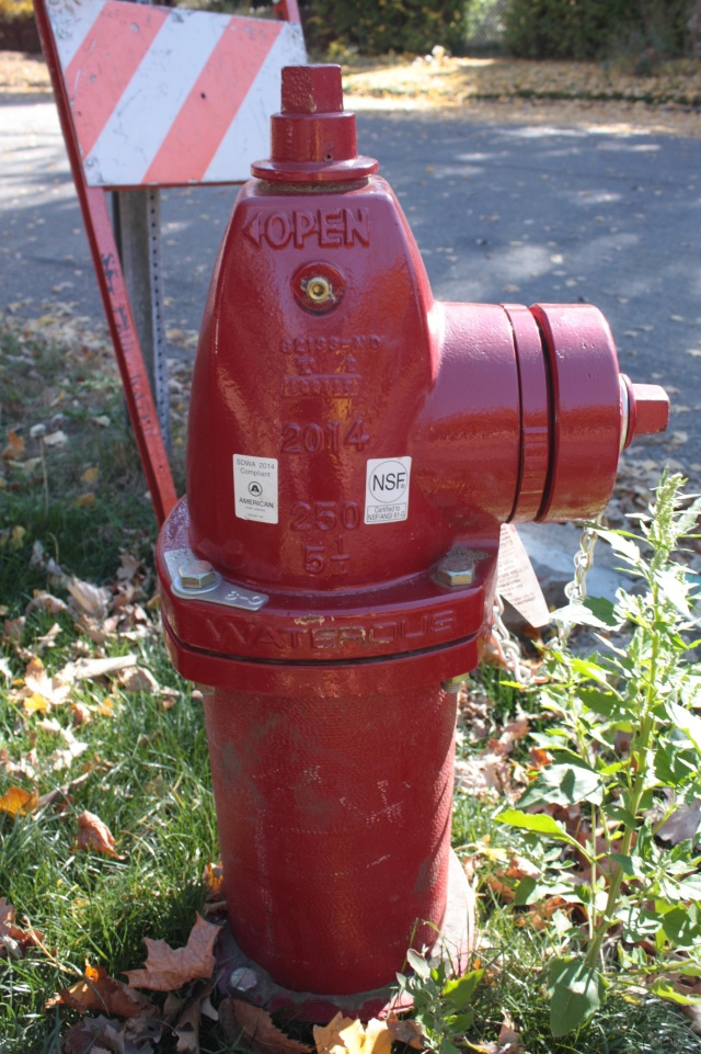 A brand new 2014 Waterous hydrant at Lafond Avenue and Fry Avenue. Unlike most of the other hydrants around town it doesn't have yellow hose caps.