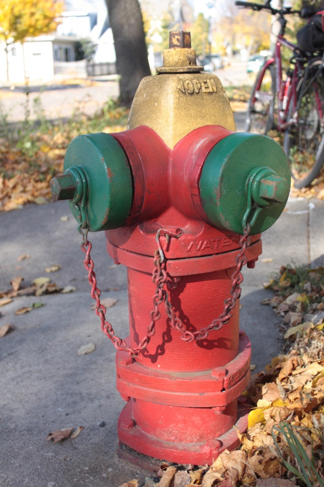 This higher capacity hydrant is located at Oxford Street and Front Avenue, where there are stores and businesses on all four corners.