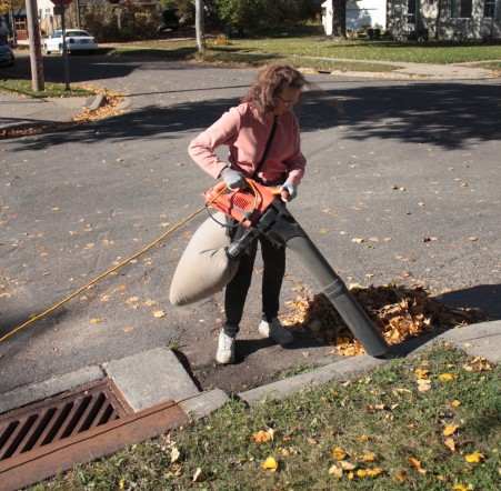 Como curb cleanup 3