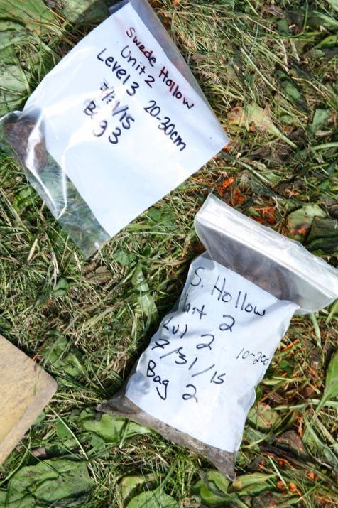 Specimen bags are carefully labeled to the samples organized.