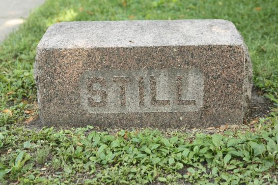 This granite block on the boulevard in front of the house looks like a grave marker. In reality, it was a stepping stone for passengers exiting their horse drawn carriages.