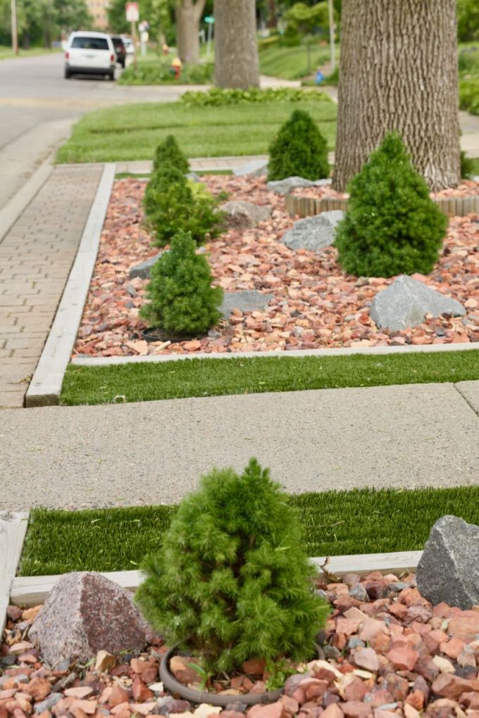Gene replaced the boulevard grass with a mix of field turf, stones, and small evergreens.
