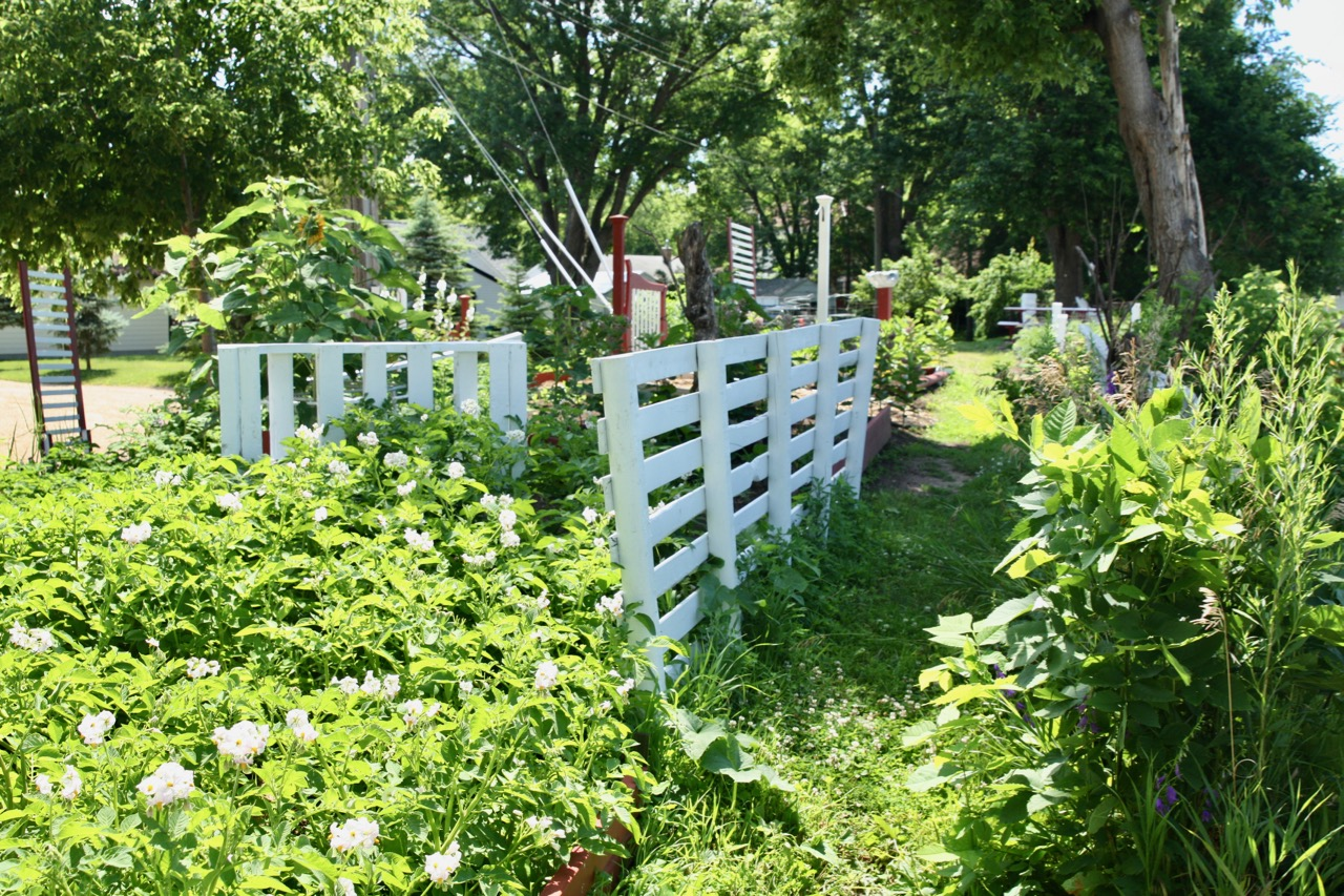 Donna's garden spans at least 100 feet of land along the Ayd Mill Road railroad tracks.