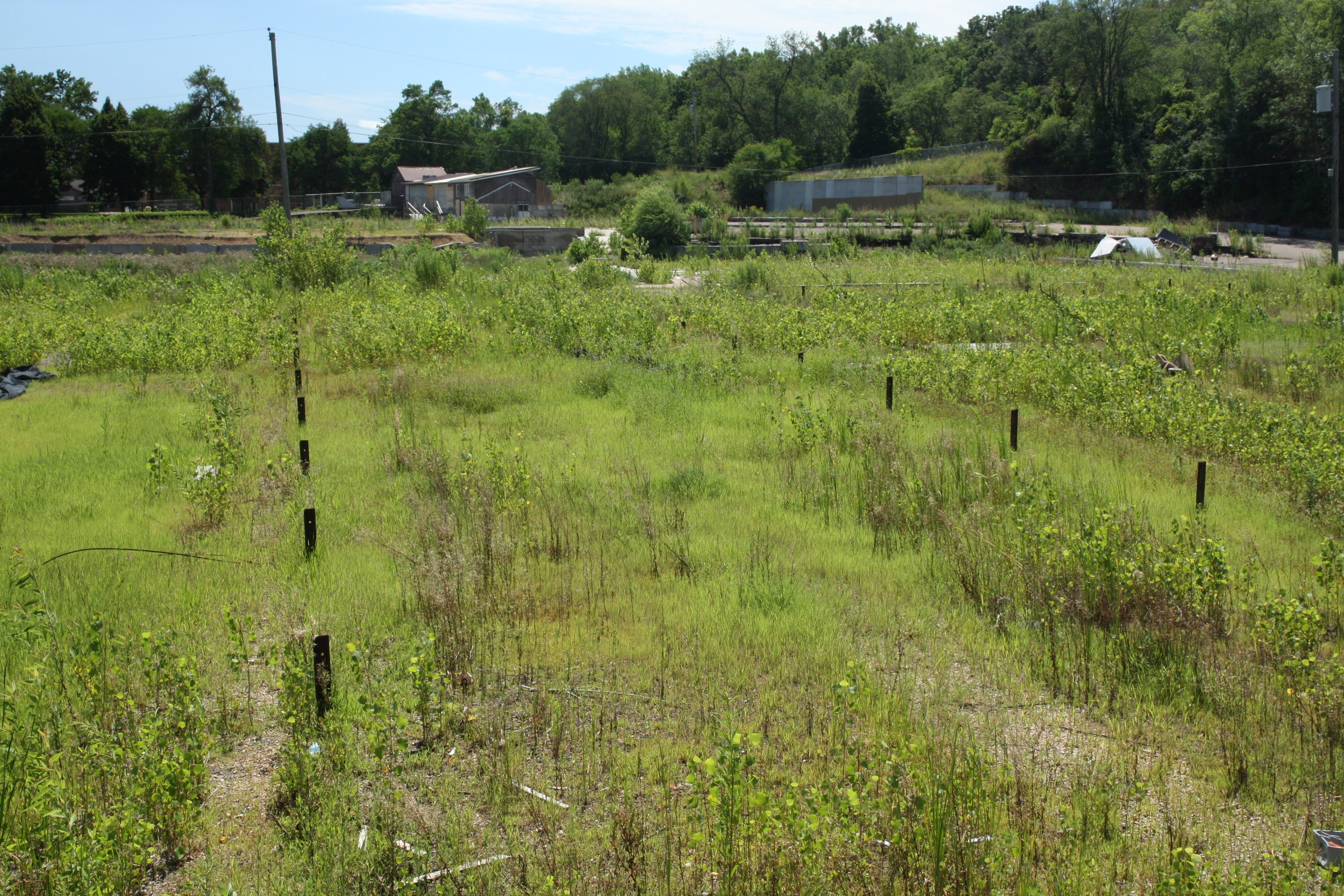 Additional fields and other buildings on the far south end of the Linder property.