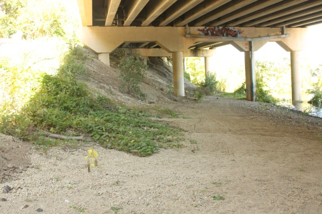 The graded path ended under a bridge that carries Shepard Road.