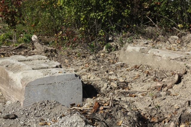 Concrete supports or bases remain from a previous use.
