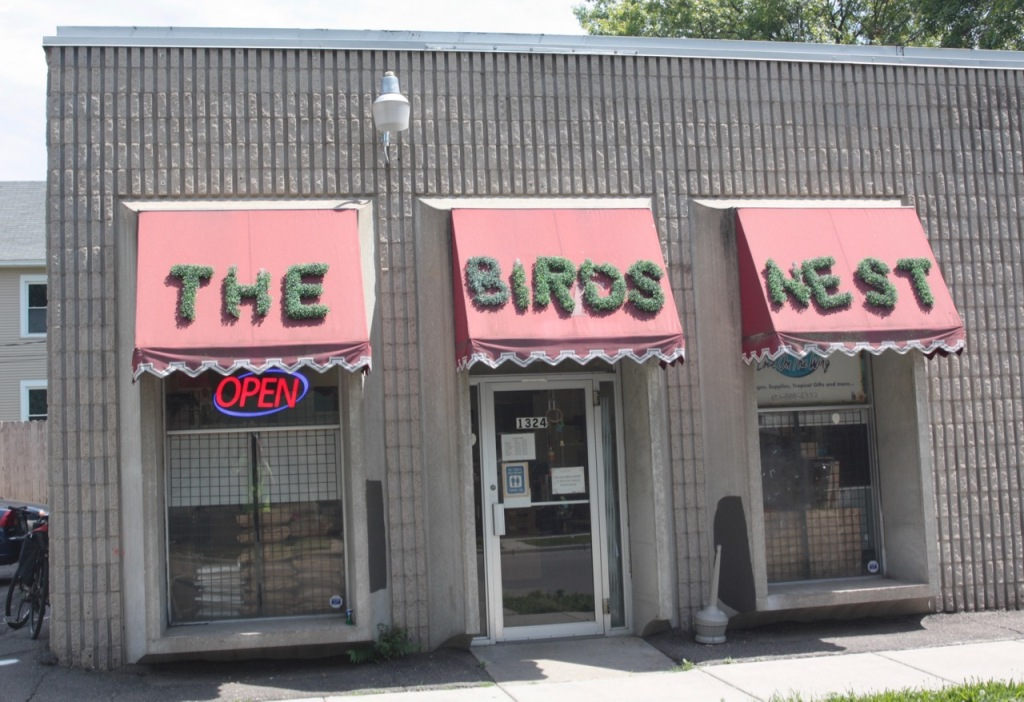 The Birds Nest, at the corner of Ivy and Payne Avenue, specialized in pet birds. Unfortunately, the store's owner wasn't in when I visited.