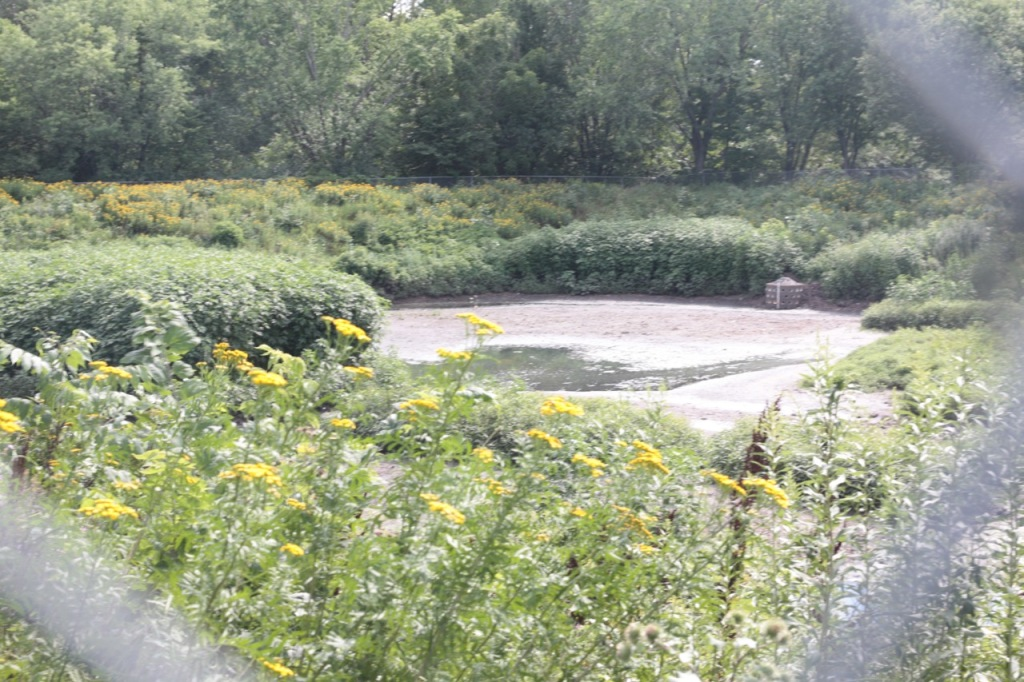 Roger Puchreiter was a long-time employee of the City's sewer utility and, according to The Street Where You Live by Don Empson, the designer of this pond in the early 1970s.