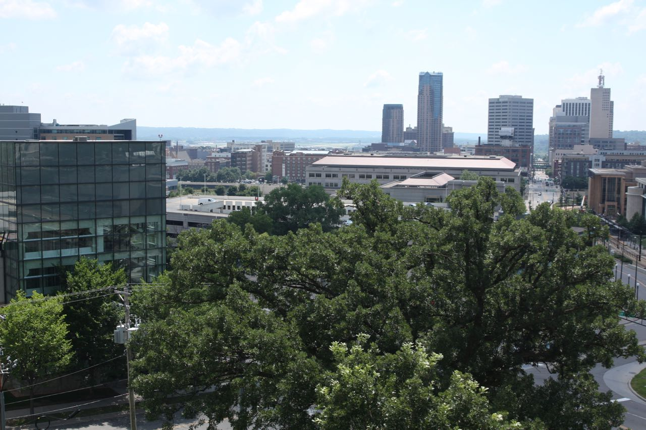 Looking south from the overlook at Cass Gilbert Memorial Park. Galtier Towers are the two tall buildings in the center back, and the First National Bank Building is the tower on the right.