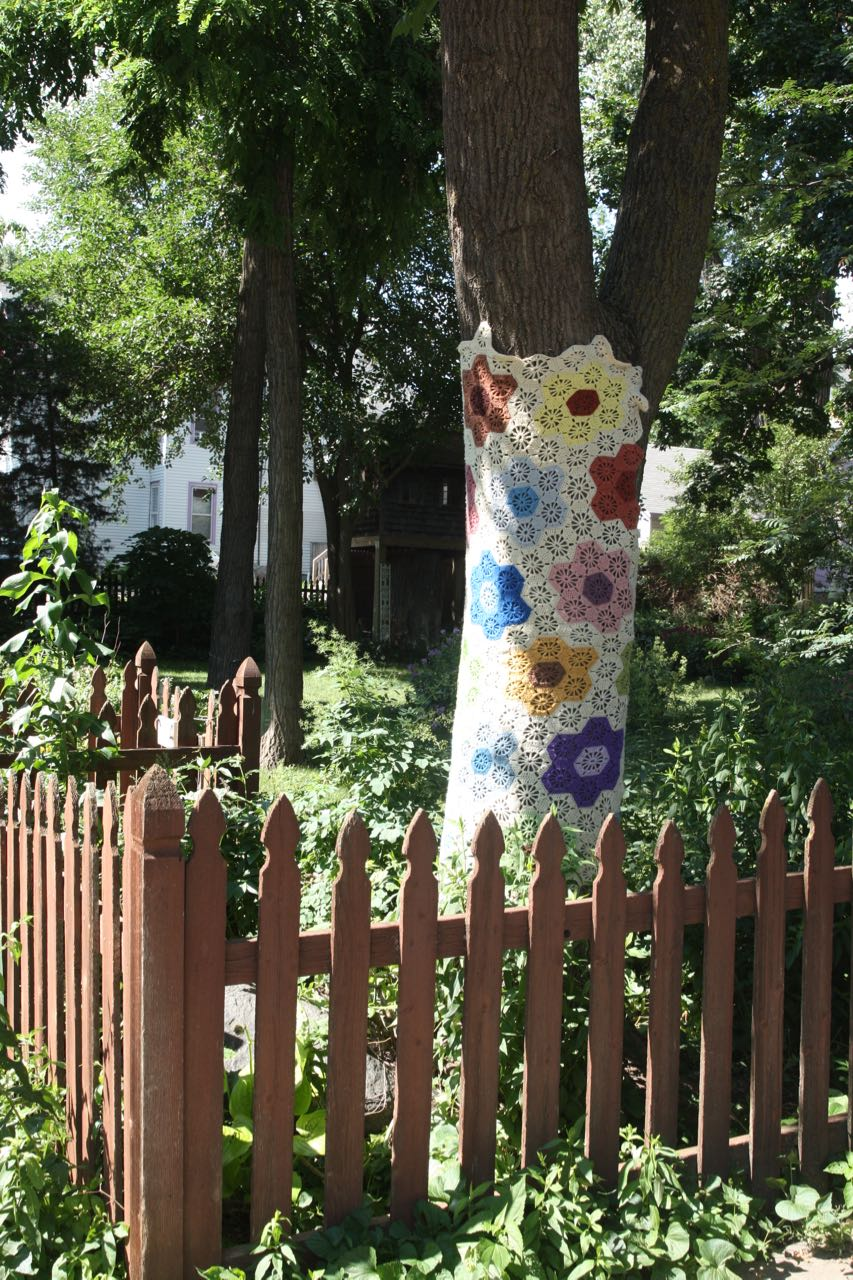 "One of several trees ""yarn bombed"" near Fourth and Bates."