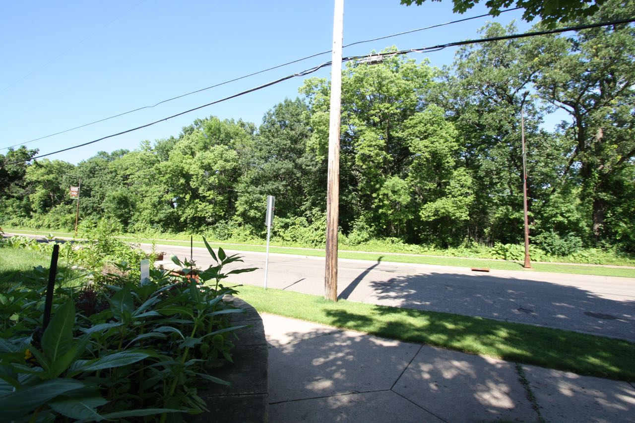 The Wolf Woods at Como Zoo are across Hamline Avenue and behind the line of trees. The photo was taken in the front yard of Marcus and Gary's house.